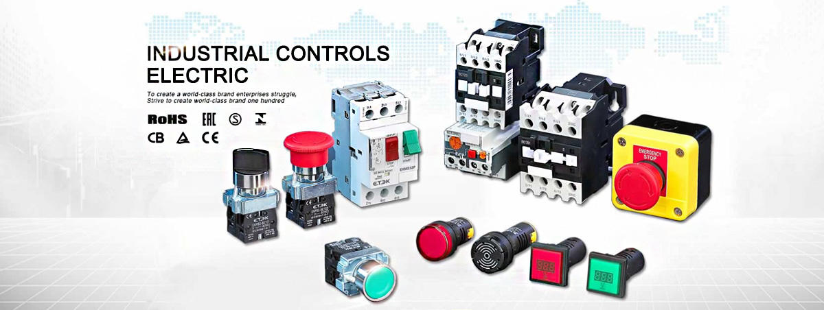 INDUSTRIAL CONTROLS ELECTRIC
